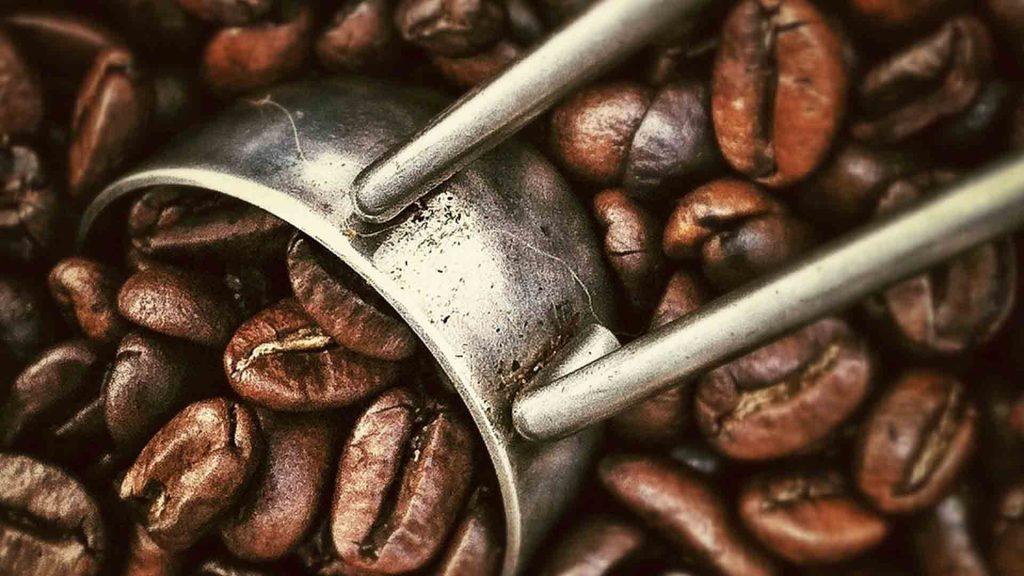 Best Coffee Roasters