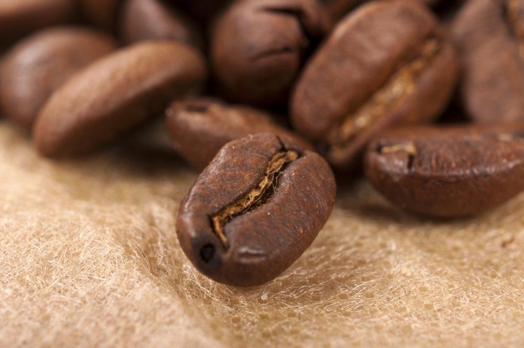 Arabica vs. Robusta Coffee Beans